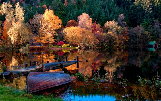 Wallpaper The autumn lake forest morning