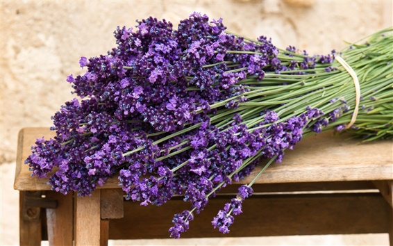 Wallpaper Bouquet of purple lavender flowers