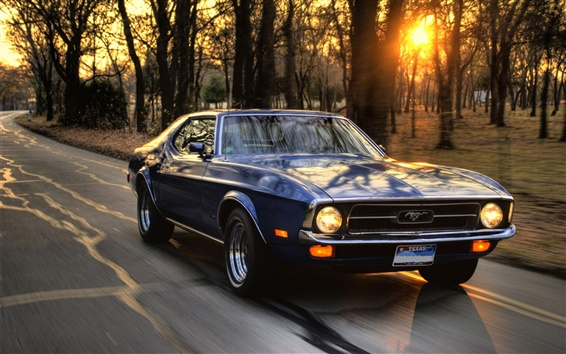 Wallpaper Ford Mustang speed at sunset