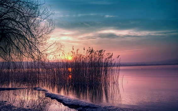 Wallpaper Twilight beautiful landscape, quiet lake, reed, sunset