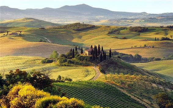 Wallpaper Beautiful summer landscape of Italian farm