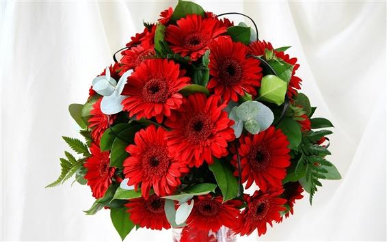 Fondos de pantalla Ramo de flores de gerbera roja