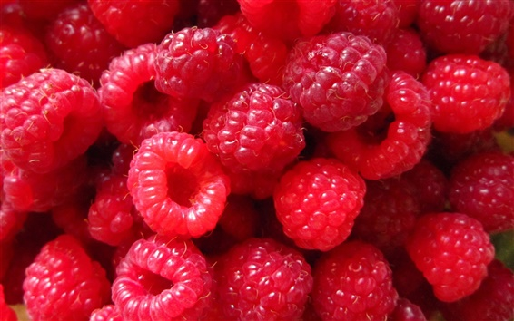 Wallpaper Red Raspberry berries, close-up photography