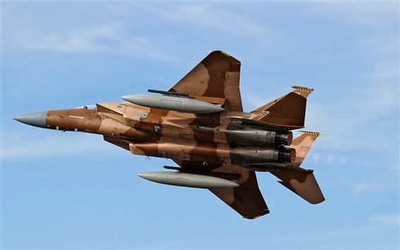 배경 화면 F-15 이글, 항공기, 비행