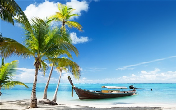 Wallpaper Palm trees, boat, tropical sea, beach sand, clouds