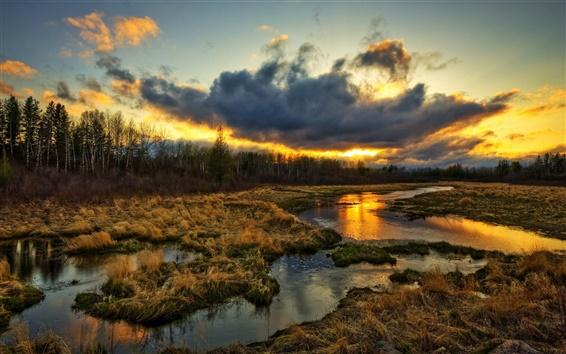 Wallpaper Wetlands, trees, clouds, sunset, grass, water stream, beautiful scenery