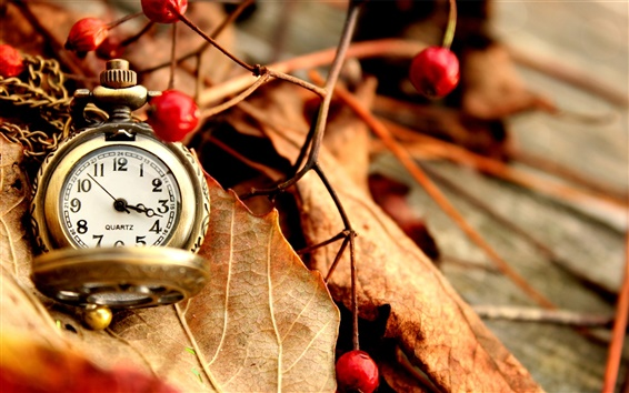 Wallpaper Autumn leaves, pocket watch