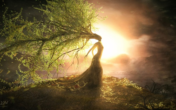 Wallpaper Beautiful tree wizard, the sun bright, creative design