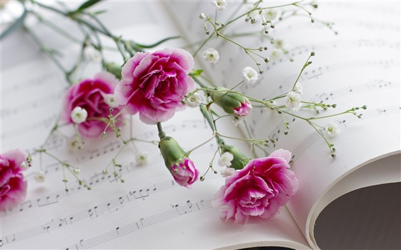 Wallpaper Carnations, flowers, book, musical scores