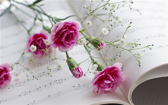 Papéis de Parede Cravos, flores, livros, partituras musicais