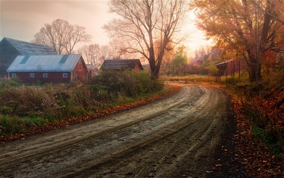 Wallpaper Fantastic scenery, autumn countryside, tree red leaves, road, house