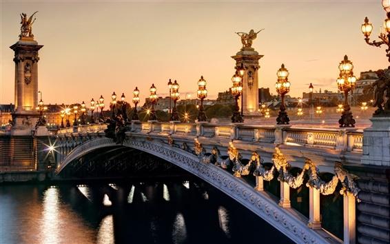 Fondos de pantalla Francia París, Pont Alexandre III, el río Sena, paisaje nocturno de la ciudad se ilumina