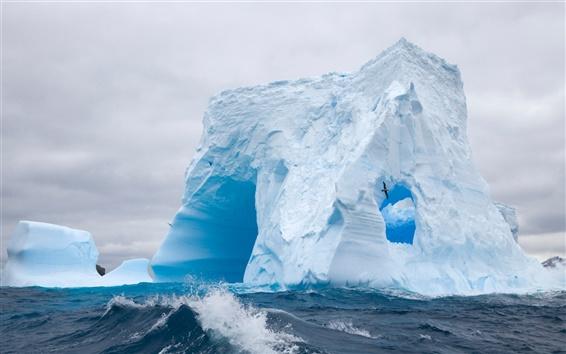 Wallpaper Huge Antarctic sea ice