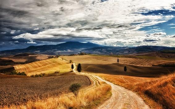 Fond d'écran Italie Toscane, sentiers pédestres, des arbres, des collines, herbe, ciel, nuages