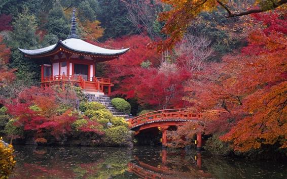 Fond d'écran Japon Kyoto Daigo paysage d'automne