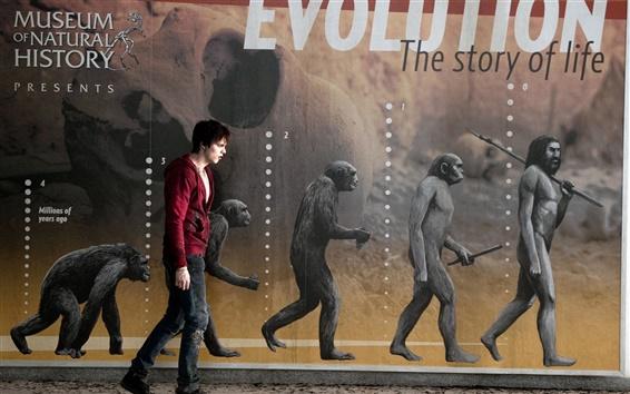 Wallpaper Nicholas Hoult in Warm Bodies movie