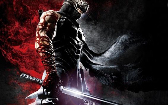 Fond d'écran Ninja Gaiden 3