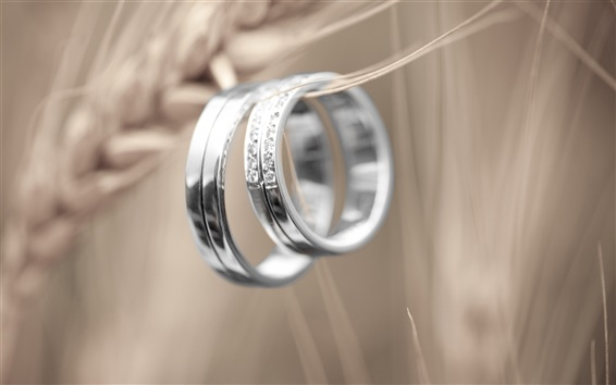 Обои Платиновая пару колец, Знак любви