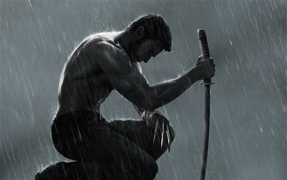 Wallpaper The Wolverine 2 HD