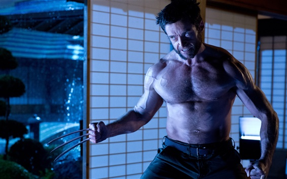 Wallpaper The Wolverine 2, Hugh Jackman