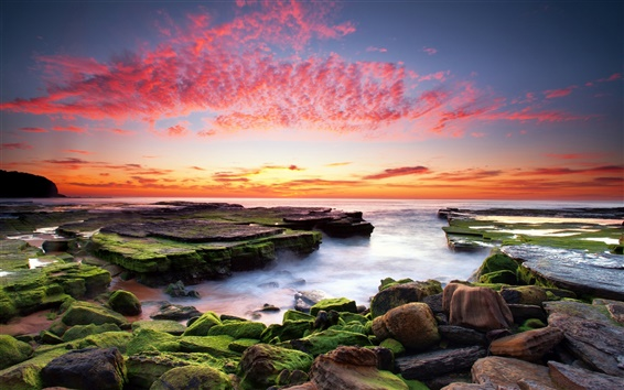 Wallpaper The red color of the sky, ocean, rocks, moss