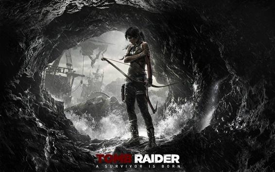 Fond d'écran Tomb Raider: A Survivor Is Born