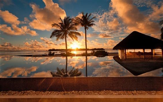Wallpaper Tropical ocean scenery, palm tree, house, dusk