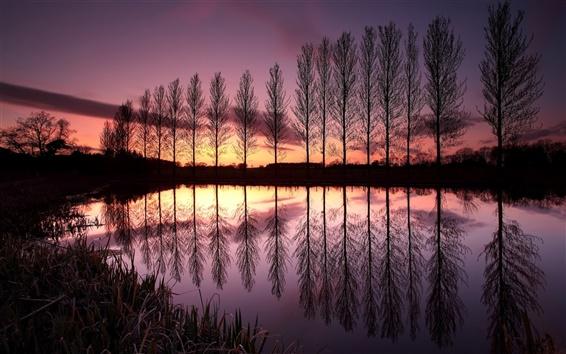 Обои Англия красивыми пейзажами природы, озеро, отражение, деревья, закат, сумерки, фиолетовый