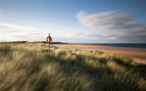 Wallpaper England sea coast scenery, sand beach, grass