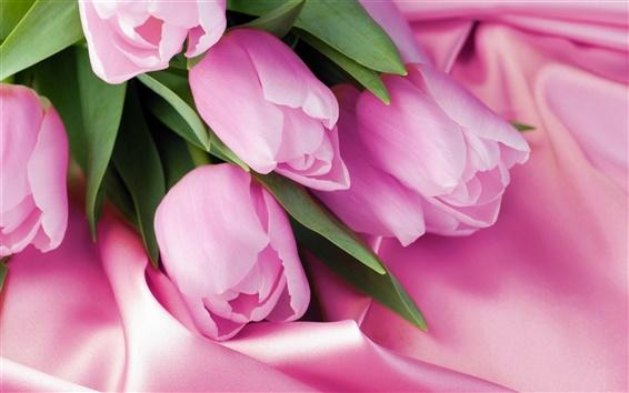 Wallpaper Pink tulip macro, pink satin