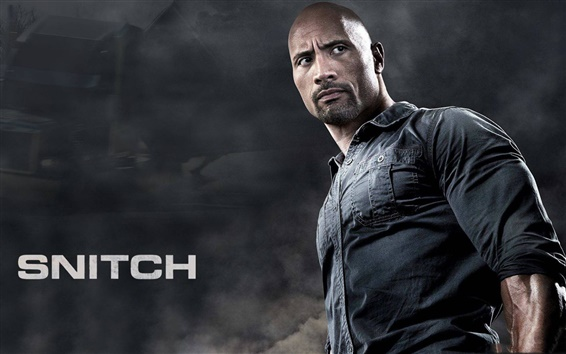 Wallpaper Snitch, Dwayne Johnson, 2013 movie