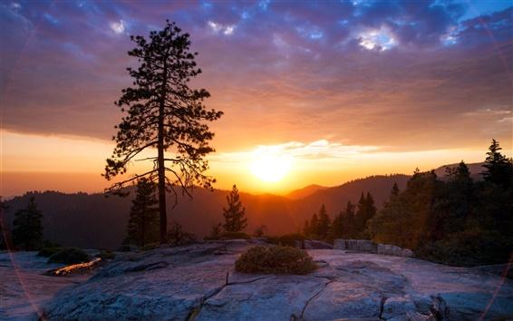 Wallpaper Sunrise on the hill, beautiful scenery