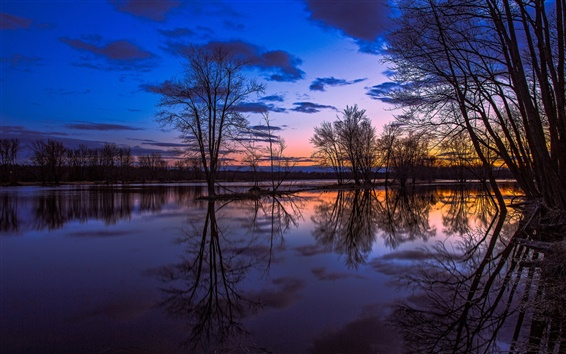 Wallpaper Canada Ontario, lake reflection, trees, sunset, beautiful scenery