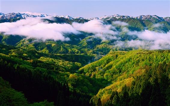 Papéis de Parede Japão Honshu Ishikawa, manhã de primavera, paisagem, natureza bela, névoa, montanhas