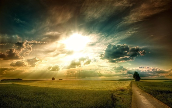 Wallpaper Plains landscape, grass, fields, road, tree, sky clouds, sun rays