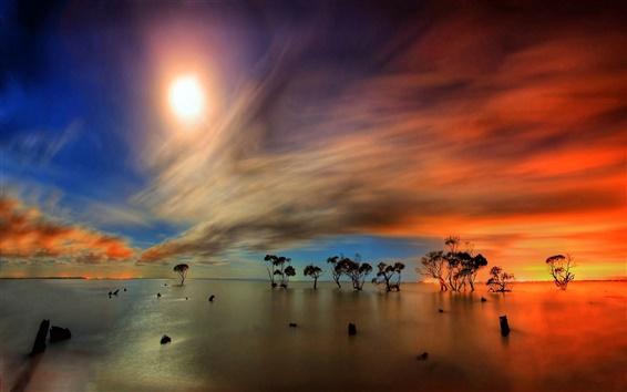 Fond d'écran Surface de l'eau, des arbres de réflexion, horizon, ciel, nuages, soleil, rayons