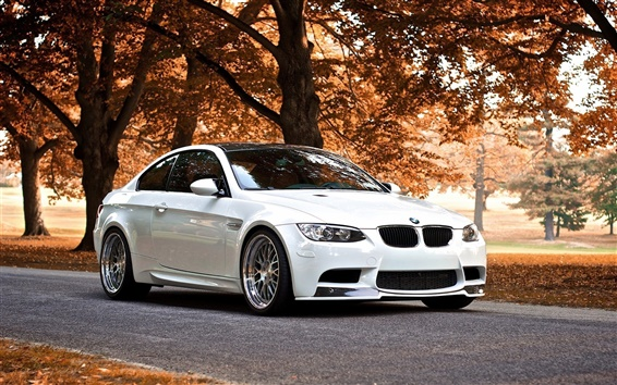 Wallpaper BMW M3 in the autumn