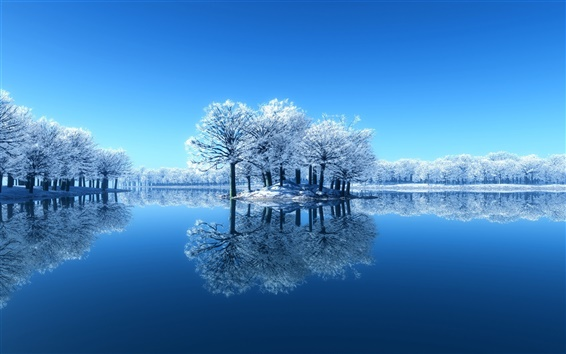 Wallpaper Blue beauty of the winter, snow, trees, mirror lake, reflection