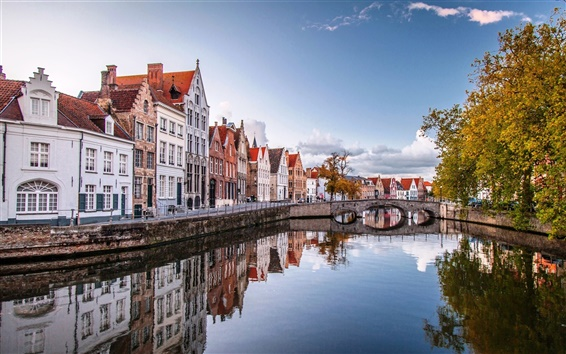 Wallpaper Brussels, Belgium, beautiful autumn scenery, houses, water, river, bridge, trees