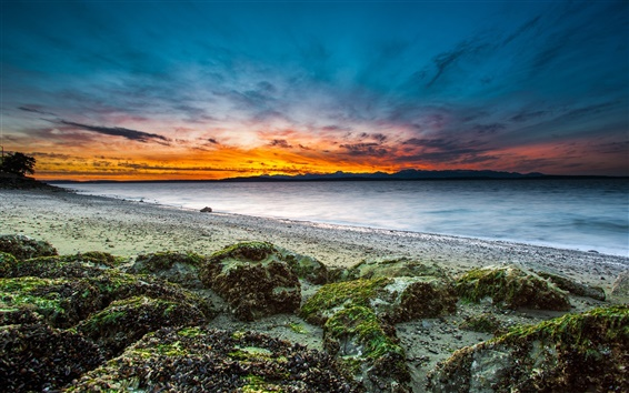 Wallpaper USA, Washington, Seattle, beach, shore, stones, sunset, sea