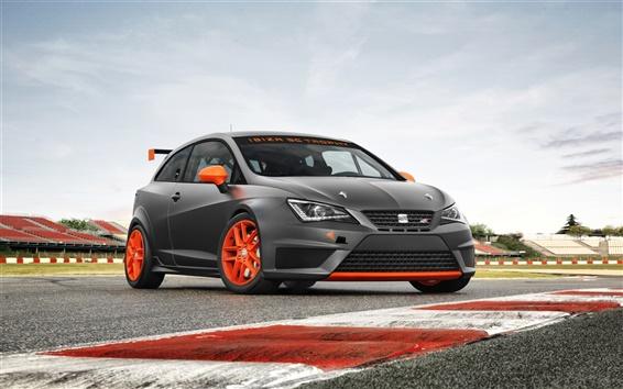 Fond d'écran 2013 SEAT Ibiza SC Trophy voiture de sport