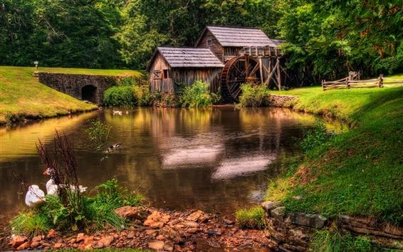 Wallpaper Farm landscape, water tankers, river, duck