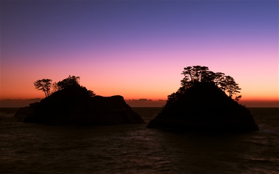Wallpaper Japan, Shizuoka Prefecture, sea, rocks, trees, evening, sunset, purple sky