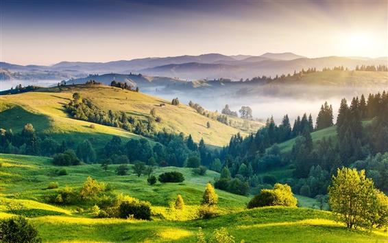 Wallpaper Nature landscape, sunrise, hills, trees, grass, fog