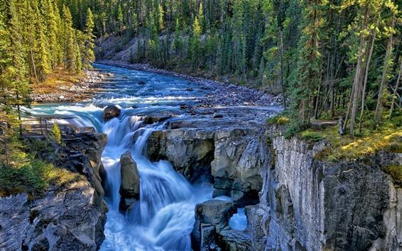 Papéis de Parede Sunwapta Falls, Jasper National Park, Canada, rio, árvores