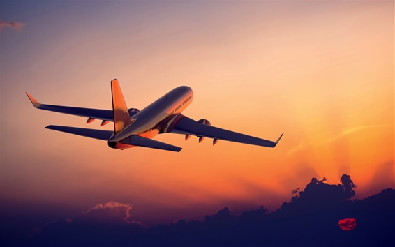 Wallpaper The plane flying at sunset, airliner photography