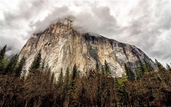 Обои США, Калифорния, Национальный парк Йосемити, рок горы, деревья, облака