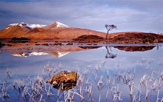 Wallpaper Winter lake, hay, dry trees, snow-capped mountains, water reflection