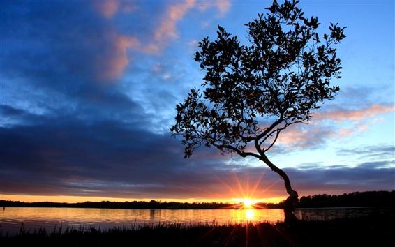 壁紙 川側の美しい夕暮れの風景、日没、木、空、雲