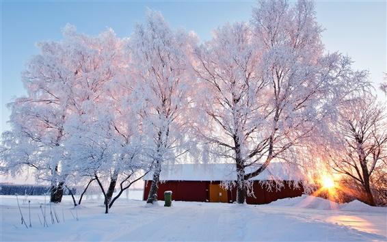 Wallpaper Beautiful winter landscape, snowy, trees, house, sunlight